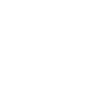 icon: Shuttle